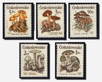Czechoslovakia stamp Mushroom.jpg