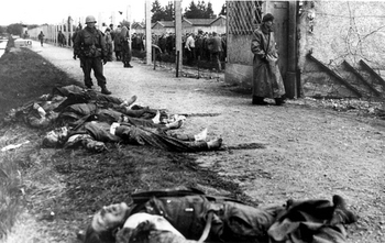 Dachau, Germany, 1945, American soldiers standing near the corpses of SS guards..jpg