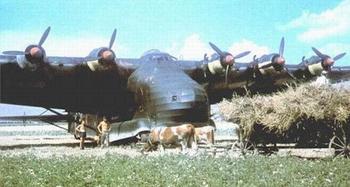 Me323 Gigant.JPG