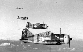 Finnish American Brewster F2A Buffalo's in flight.jpg