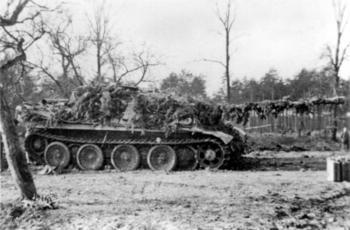 Jagdpanther_sPz Abt 654.jpg