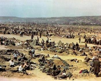 POWs Rhine meadow camps.jpg