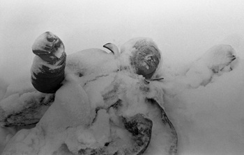 The Winter War_7.jpg
