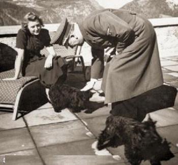 eva's Scottish Terriers.jpg