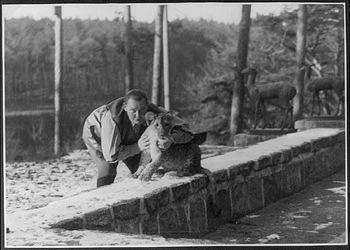 hermann goering tiger lion cub baby child children luftwaffe 5 April 1936.jpg